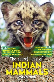 The Secret Lives of Indian Mammals price comparison at Flipkart, Amazon, Crossword, Uread, Bookadda, Landmark, Homeshop18