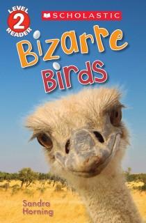 Bizarre Birds (Level 2 Reader) price comparison at Flipkart, Amazon, Crossword, Uread, Bookadda, Landmark, Homeshop18