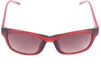 4584fee19b Calvin Klein Sunglasses - Buy Calvin Klein Sunglasses Online at Best Prices  in India - Flipkart.com