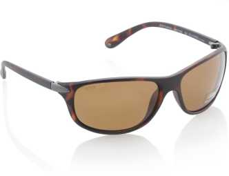 3b157f689b Glares By Titan Sunglasses - Buy Glares By Titan Sunglasses Online ...