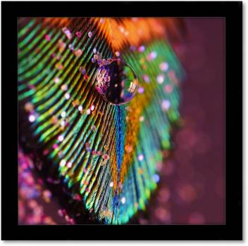 Multicolor Peacock Feather Cute Designacrylic Single Wall Art Mural Vivid Home Collectible Hanging With Black Frame Fine Art Print Art Paintings Posters In India Buy Art Film Design Movie