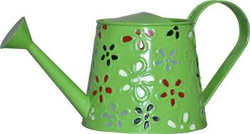 Metal Green Watering Can For Plants