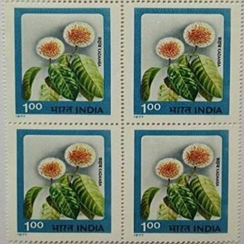 Sams Shopping Indian Flowers Kadamba Flower Kadamba Kadam Neolamarckia Cadamba Horticulture Botany Stamps Price In India Buy Sams Shopping Indian Flowers Kadamba Flower Kadamba Kadam Neolamarckia Cadamba Horticulture Botany