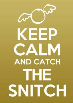 Keep Calm Snitch Harry Potter Quote A3 NON TEARABLE High ...