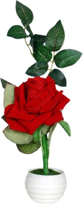 Loxia Red, Green Rose Artificial Flower  with Pot(2.7 inch, Pack of 1)  available at flipkart for Rs.245