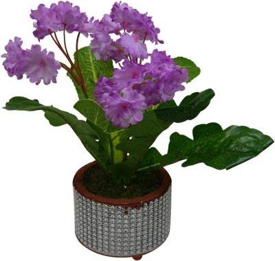 The Fancy Mart FP-1590-510 Multicolor Wild Flower Artificial Flower  with Pot(4.5 inch, Pack of 1)  available at flipkart for Rs.262