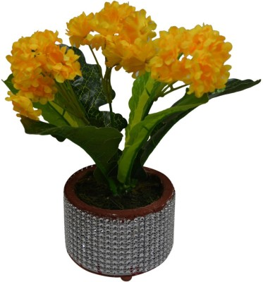The Fancy Mart FP-1580-507 Multicolor Wild Flower Artificial Flower  with Pot(4.5 inch, Pack of 1)  available at flipkart for Rs.278