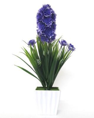 Miracle Retail Bonsai Wild Artificial Plant  with Pot(28 cm, Multicolor) at flipkart