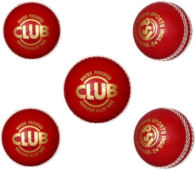 Priya Sports Red Rubber Cricket Leather Ball Pack of 5, Red Priya Sports Cricket Balls