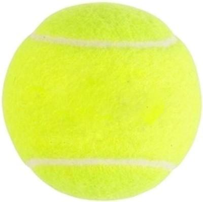 Y   J Cricket Ball Tennis Ball Pack of 2, Yellow Y   J Tennis Balls