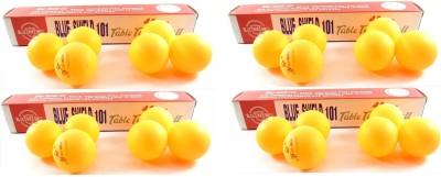 Blue Shield 101 Table Tennis Ball Pack of 24, Orange Blue Shield Table Tennis Balls