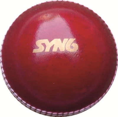 SYN6 SSPL 225 CBL Cricket Leather Ball Pack of 1, Red