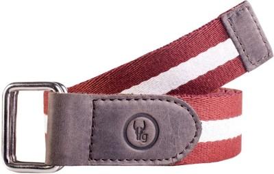 Hidegear Men Casual White, Brown Canvas, Genuine Leather Belt
