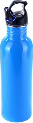 birdy decntsip-9 750 ml Flask(Pack of 1, Blue)