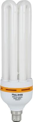 65-W-CFL-4U-Bulb
