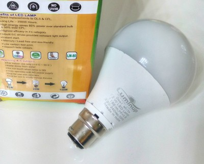 LUMINUP-12W-B22-LED-Bulb-(White)