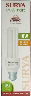 Ecosmart-18-W-CFL-Bulb