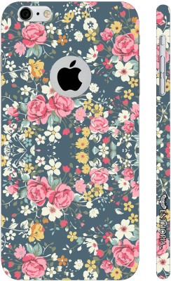 Enthopia Back Cover for Apple iPhone 6S, Apple iPhone 6(Multicolor)