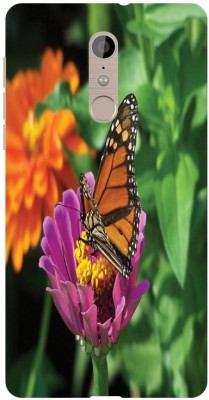 Treecase Back Cover for Infocus Epic 1(Multicolor, Silicon)