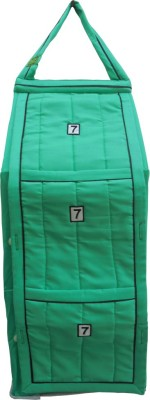 SRIM SMC0088 Polyester Collapsible Wardrobe(Finish Color - Light Green)