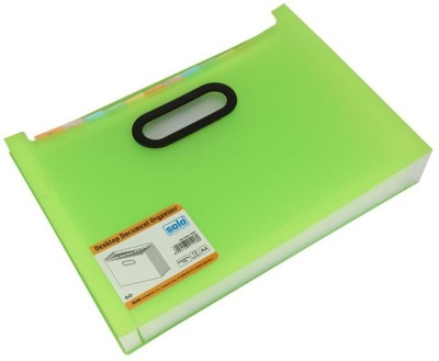 Solo 12 Compartments Polypropylene Plastic Desktop Expanding Document Organiser(Frosted Green)