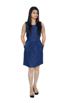 Jaamsoroyals Women's A-line Blue Dress
