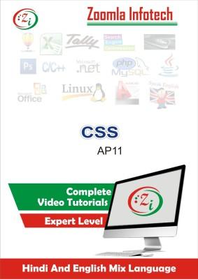 Zoomla Infotech CSS-AP11/2016(DVD)