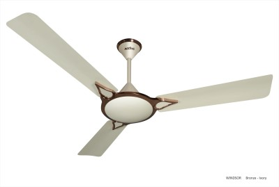 ACTIVA WINDSOR 5 STAR 1400 mm 3 Blade Ceiling Fan(BRONZE IVORY, Pack of 1) at flipkart