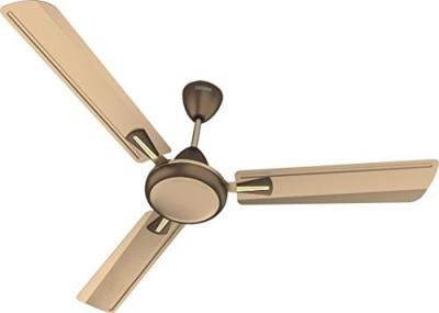Standard Stellar Premium Deco 1200mm 1200 mm 3 Blade Ceiling Fan(Brown)