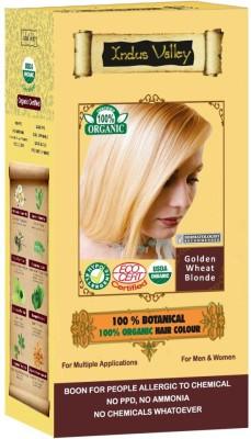 https://rukminim1.flixcart.com/image/400/400/hair-color/p/f/j/indus-valley-100-botanical-natural-heathier-original-imaeja23yxhp5zcy.jpeg?q=90