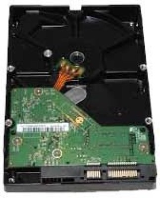 WD Green Power 250 GB Desktop Internal Hard Disk Drive (WD250AVVS)