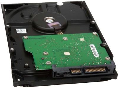 WD Green Power 250 GB Desktop Internal Hard Disk Drive (WD250AVVS1)