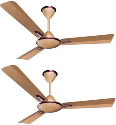 Crompton Aura Prime Anti Dust pack of 2 1200 mm 3 Blade Ceiling Fan(Briken effect, Pack of 2)