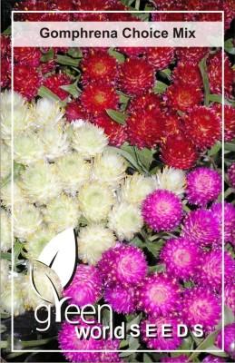 Green World Flower Seeds Price In India Green World Flower Seeds