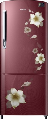 Samsung 212 L Direct Cool Single Door 4 Star  2019  Refrigerator Star Flower Red, RR22M274YR2/NL Samsung Refrigerators