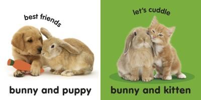 https://rukminim1.flixcart.com/image/400/400/j1xvzbk0/book/5/8/7/baby-touch-and-feel-bunny-original-imaesbn3txnjzw3q.jpeg?q=90