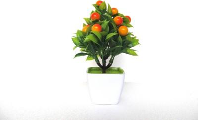 https://rukminim1.flixcart.com/image/400/400/j1zbf680-1/artificial-plant/p/f/d/bns-22-miracle-retail-original-imaetcbg2gftpghz.jpeg?q=90