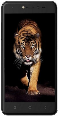 Coolpad Note 5 Lite (Grey / Space Grey, 16 GB)(3 GB RAM)