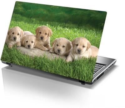 Printclub Designer-803 Vinyl Laptop Decal 15.6