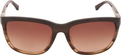CK Wayfarer Sunglasses(Brown) at flipkart
