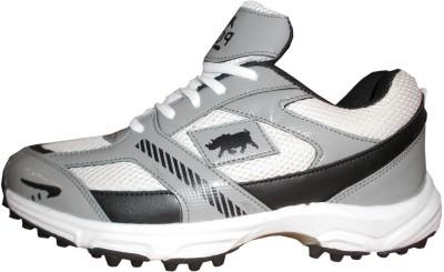 Port Billy Cricket Shoes For Men(Multicolor)