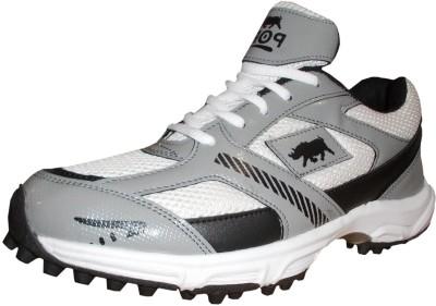 Port Mendrine Cricket Shoes For Men(Multicolor)