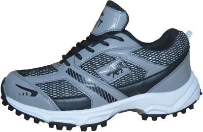 Port Steve Cricket Shoes For Men(Grey)