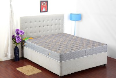 Centuary Mattresses Xbounce 6 inch Queen PU Foam Mattress(Bonnell Spring)