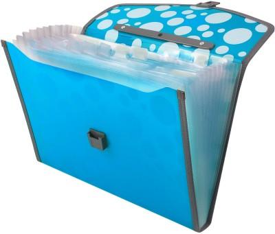 TRANBO Polypropylene File Folder with 13 Pockets, Handle, Index Tab, A4 Size, Blue(Set Of 1, Blue)