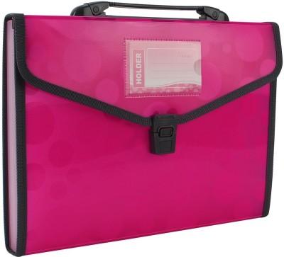 TRANBO Polypropylene Polka Dots File Folder with 13 Pockets, Handle, Index Tab, A4 Size, Pink(Set Of 1, Pink)