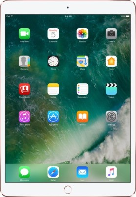 View Apple iPad Pro 256 GB 10.5 inch with Wi-Fi Only(Rose Gold)  Price Online