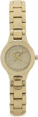 DKNY NY8692I Analog Watch  - For Women