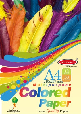 Bambalio colour Paper- Pack of 200 Sheets Smooth Finish 75 gsm/ A4 Size Mix Colour- Photo Copy/Copier/Printing/ Art & Craft Coloured Paper(Set of 4, Yellow, Green, Orange, Pink, Purple, Black, Blue, Gold, Red, Lavender)  available at flipkart for Rs.350