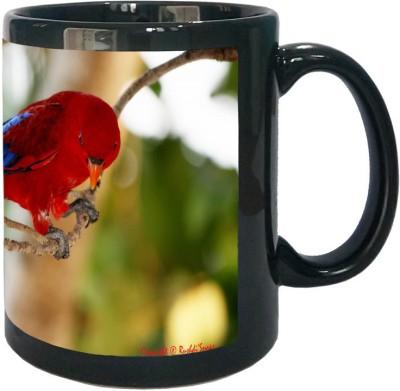 https://rukminim1.flixcart.com/image/400/400/j5mrxjk0/mug/w/t/d/red-and-blue-bird-wallpaper-black-1-arkist-original-imaew9gzbgzewfux.jpeg?q=90
